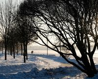 Butovo Moscow winter and couple walking in park stock images