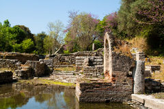Butrint ruins, Albania. Old Greek ruins in the town of Butrint, Albania Royalty Free Stock Images