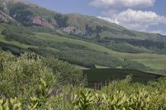Butte crestato Fotografia Stock