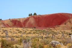 Butte del coyote Immagine Stock
