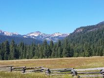 Butte Meadows Stock Images