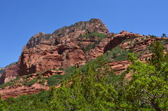 Butte in Zion National Park Stock Foto's
