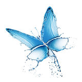 buttefly查出的飞溅水 免版税图库摄影