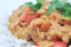 Butter chicken 4 Royalty Free Stock Image