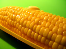 Butter Cob 2. Melting butter on top of a corn cob. Central focus Royalty Free Stock Photo