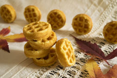 Butter cookies fluted. The composition of the pyramid of corrugated biscuit cookies and autumn leaves Stock Images