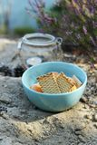 Butter cookies and lantern outdoors Stock Photos