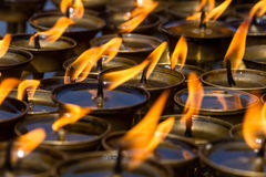 Butter Lamps Royalty Free Stock Images