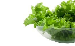 Butter Lettuce isolated on white Royalty Free Stock Photos
