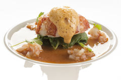 Butter poached lobster with coconut curry broth Stock Images