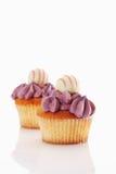Buttercream black currant cupcake with chocolate tru Stock Photos
