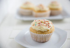 Buttercream Vanilla Cupcakes Royalty Free Stock Photography