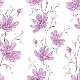 Buttercup seamless pattern. Vector illustration Royalty Free Stock Photos