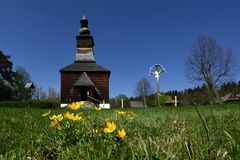 Buttercups at Folk Church, Spis region, Slovakia. Still-life of buttercups in front of old folk wooden Greek catholic church from Matysova in Stara Lubovna open stock photography
