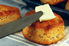 Buttered Biscuit Royalty Free Stock Photos
