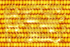 Buttered Corn on Cob. Yellow Corn on the cob texture with melted butter Royalty Free Stock Photos