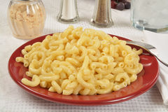 Buttered macaroni noodles Royalty Free Stock Photography