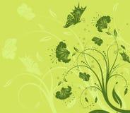 butterf tła kwiat Obraz Royalty Free