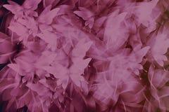 Butterfl абстрактной романтичной предпосылки розовое и черное цвета тона Стоковое фото RF