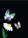 Butterflies. Many-colored butterflies against the black background royalty free illustration