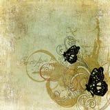 Butterflies. Illustration of butterflies on vintage paper Stock Photos