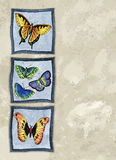 Butterflies. Illustration of butterflies on a painted canvas background. Plenty of space for copy Royalty Free Stock Photo