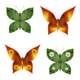 Butterflies. From the leaves and flowers Royalty Free Stock Images