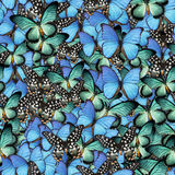 Butterflies. Seamless Texture Tile from Photo Originals Stock Images