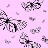Butterflies. Vector butterflies on pink background Royalty Free Stock Images