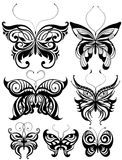 Butterflies. Graphic butterflies. Beautiful vector illustration, detailed drawing Stock Photo
