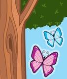 Butterflies Stock Image