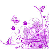 Butterflies! Royalty Free Stock Image