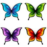 Butterflies. Stock Photography