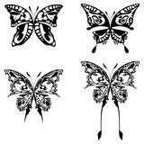 Butterflies. Four illustration of buttefly black on white Royalty Free Stock Image