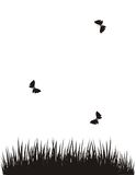 Butterflies above a field. Black-and-white picture with the image of butterflies flying above a field in summertime Royalty Free Stock Images