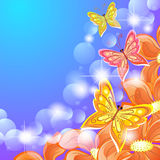 Butterflies And Orange Flowers Royalty Free Stock Photography