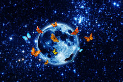 Butterflies around the moon Stock Photo