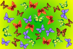 Butterflies background stock photo