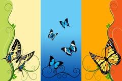 Butterflies background Stock Photos