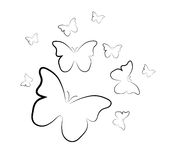 Butterflies background Stock Image