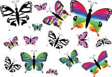 Butterflies. Big collection of colorful butterflies. Vector illustration Royalty Free Stock Photos
