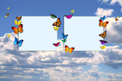Butterflies blank signs Royalty Free Stock Image