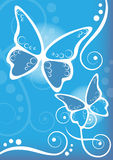 Butterflies blue background Royalty Free Stock Images