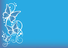 Butterflies blue background Royalty Free Stock Photography