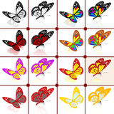 Butterflies botany set Royalty Free Stock Image