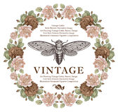 Butterflies, cicada, insects, baroque Rose flowers. Vintage frame card. Wallpaper. Vector Illustration. Royalty Free Stock Photography
