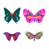 Butterflies collection Stock Photography