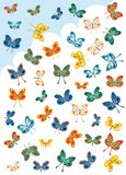 Butterflies for Collectors Royalty Free Stock Image