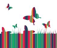 Butterflies and colorful grass background Stock Photography