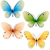 Butterflies colors vector illustration